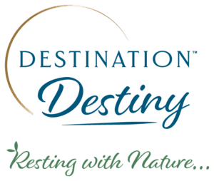Destination Destiny Logo